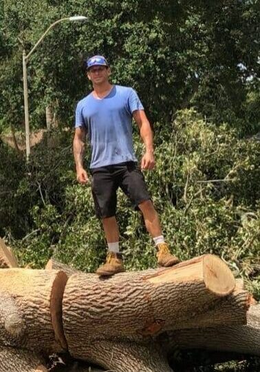 Arbor Rite Tree Service - Owner Tree Removal and Trimming Services Tampa, Clearwater, St Pete, Hillsborough County